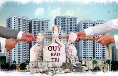 Ai quản lý phí bảo trì chung cư ?